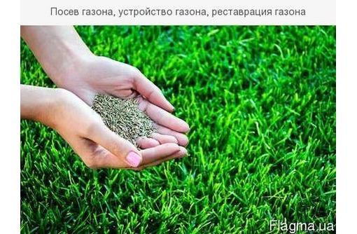 Покос травы, спил деревьев, обрезка ежевики, дробление в щепу. Нал/безнал. - Сельхоз услуги в Севастополе