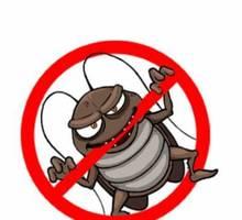 Профессиональные услуги дезинфектора. Уничтожение грызунов, насекомых и микроорганизмов. Дезинфекция - Клининговые услуги в Армянске