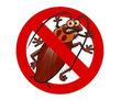 Профессиональные услуги дезинфектора. Уничтожение грызунов, насекомых и микроорганизмов. Дезинфекция, фото — «Реклама Бахчисарая»