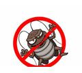 Профессиональные услуги дезинфектора. Уничтожение грызунов, насекомых и микроорганизмов. Дезинфекция - Клининговые услуги в Партените