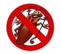 Профессиональные услуги дезинфектора. Уничтожение грызунов, насекомых и микроорганизмов. Дезинфекция - Клининговые услуги в Саках