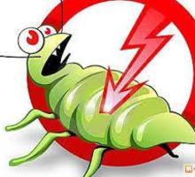 Дезинфекция, дератизация, дезинсекция. Истребление тараканов, клещей, клопов, мышей, крыс, кротов - Клининговые услуги в Форосе