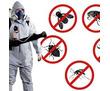Дезинфекция. Услуги профессионального дезинфектора. Уничтожаем насекомых, грызунов, микроогрганизмы, фото — «Реклама Севастополя»