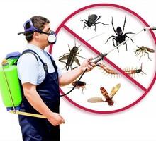 Дезинфекция, дератизация-уничтожение грызунов, дезинсекция-уничтожение насекомых. Дезинфектор. - Клининговые услуги в Форосе