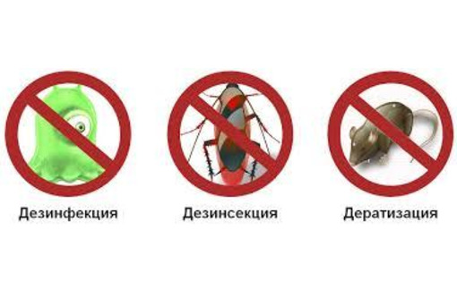 Дезинфектор. Уничтожение тараканов, клопов, клещей, муравьёв, ос, пауков, мышей, крыс, кротов. - Клининговые услуги в Красноперекопске