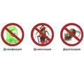 Дезинфектор. Уничтожение тараканов, клопов, клещей, муравьёв, ос, пауков, мышей, крыс, кротов. - Клининговые услуги в Щелкино