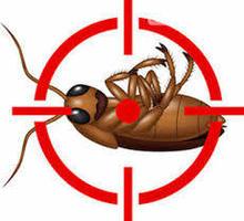 Дезинфекция, дератизация, дезинсекция. Уничтожение тараканов, клещей, клопов, мышей, крыс, кротов - Клининговые услуги в Белогорске