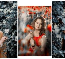 Фотограф Севастополь, услуги фотографа - Фото-, аудио-, видеоуслуги в Севастополе