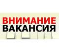 Помощник контент-менеджера - СМИ, полиграфия, маркетинг, дизайн в Севастополе