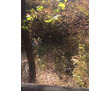Продается участок с озером 48соток Горный Крым п. Новополье, фото — «Реклама Бахчисарая»