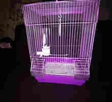 клетка для декоративных птиц - Продажа в Севастополе