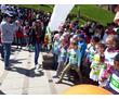 Организация спортивно массовых мероприятий, фото — «Реклама Севастополя»