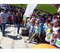 Организация спортивно массовых мероприятий - Свадьбы, торжества в Севастополе