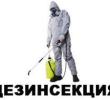 Дезинсекция. Полное уничтожение тараканов, клопов, клещей, скалопендр, муравьёв - Клининговые услуги в Саках