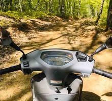 Аренда скутера Honda Прокат скутера/мопеда Honda - Прокат мототранспорта в Севастополе