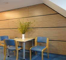 Пластики HPL листовые для стен, панели декоративные для предприятий питания и пищевых производств - Ремонт, отделка в Севастополе