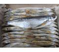 Чехонь вяленая - Продукты питания в Севастополе