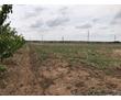 Земельный участок, фото — «Реклама Джанкоя»