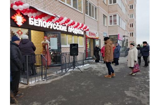 Промо ведущая на открытие магазина - Реклама, дизайн, web, seo в Севастополе