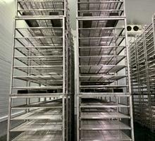 Стеллаж для созревания сыра - Оборудование для HoReCa в Симферополе