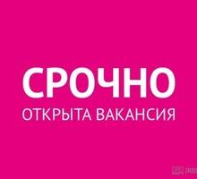 Подработка для энергичных пенсионеров и студентов. - Секретариат, делопроизводство, АХО в Симферополе