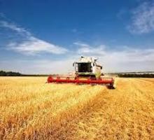 Комбайнер требуется предприятию на постоянную работу. - Сельское хозяйство, агробизнес в Белогорске