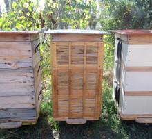 Продам ПАСЕКУ, пчелосемьи с ульями - Пчеловодство в Бахчисарае
