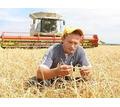 Предприятию на постоянную работу требуются:  - Комбайнер - Сельское хозяйство, агробизнес в Крыму