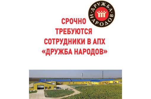Срочно требуются сотрудники в АПХ «Дружба народов», фото — «Реклама Армянска»