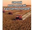 Широкий выбор вакансий в АПХ «Дружба народов» - Сельское хозяйство, агробизнес в Красноперекопске