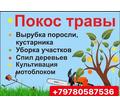 Спил деревьев, покос травы, расчистка участков Севастополь! - Сельхоз услуги в Севастополе