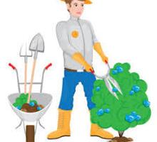 На круглогодичную работу в частную гостиницу (Новый Свет, Судак) требуются: Садовник - Сельское хозяйство, агробизнес в Феодосии