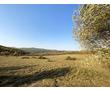 Продается земельный участок в с. Богатырь 6.4 га, фото — «Реклама Севастополя»