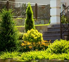 Ландшафтный дизайн в Севастополе: проектирование, реализация, уход. Благоустройство территории. - Ландшафтный дизайн в Севастополе