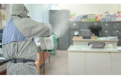 Дезинфекция против коронавируса в Севастополе для учреждений и организаций, фото — «Реклама Севастополя»