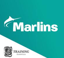 Подготовка к прохождению Marlins Test - Обучение для моряков в Севастополе