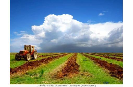Продам земельный участок 3 600 га в Бахчисарае, фото — «Реклама Бахчисарая»