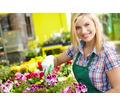 Требуется садовник/ца (частичная занятость) - Сервис и быт / домашний персонал в Севастополе