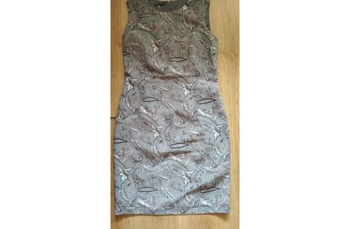 Платья, пиджак, костюм, фото — «Реклама Севастополя»