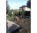 Рулонный газон. Посевной газон. Гидропосев - Ландшафтный дизайн в Керчи