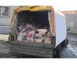 Вывоз мусора, хлама, грунта. Быстро и качественно. Демонтажные работы., фото — «Реклама Севастополя»