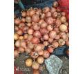 Продаю Лук - Эко-продукты, фрукты, овощи в Симферополе