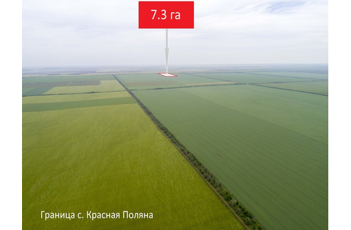 Земельный пай 7,3 га, до села Красная Поляна 3,5 км. - Участки в Черноморском