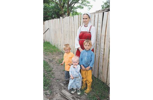 Куплю тачку строительную садовую, фото — «Реклама Севастополя»