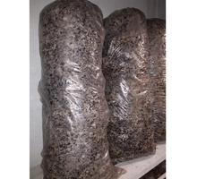 Продам грибные блоки вешенки, готовые к плодоношению. Урожайность до 3 кг грибов с одного блока - Грибоводство в Белогорске