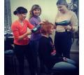 АРТ Директор салона красоты - Курсы учебные в Крыму