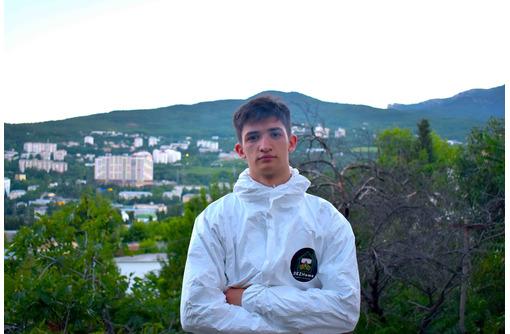Дезинсекция в Севастополе - Клининговые услуги в Севастополе