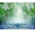 Питьевая вода в Севастополе – «Эковода»: вода, которую хочется пить! - Продукты питания в Севастополе