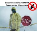 Уничтожение от тараканов с Гарантией - Клининговые услуги в Евпатории