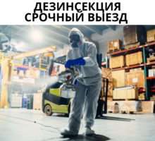 Обработка тараканов с гарантией до 1 года! - Клининговые услуги в Крыму